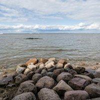 Финский залив :: Сергей Лындин