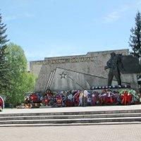 Вечный огонь :: Олег Афанасьевич Сергеев