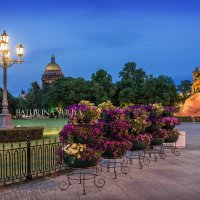 Цветы на Сенатской площади :: Юлия Батурина