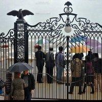 Дождь не помеха :: Vanda Kremer