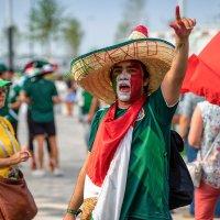 Бразилия-Мексика :: Алексей Головин