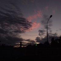 Белые ночи :: Сапсан