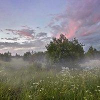 По влажной траве стелился туман :: Лара Симонова