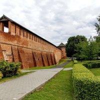 Фрагмент стены Коломенского кремля. :: Анатолий. Chesnavik.