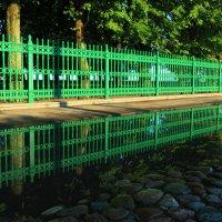Зеленкой крашеный забор :: Сергей Григорьев