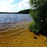 Голубое озеро на Карельском перешейке :: Андрей Кротов