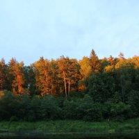 На закате :: sm-lydmila