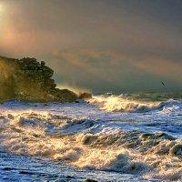утренний шторм :: viton