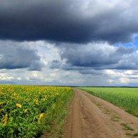 Будет дождь :: Владимир