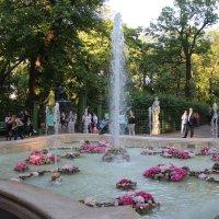 Летний сад. Гербовый фонтан :: Наталья Герасимова