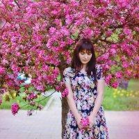 В цветущих деревьях :: Анастасия Приймак