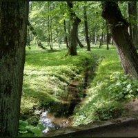В петергофском парке :: vadim