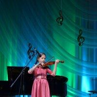 Её высочество скрипка :: stasija ---