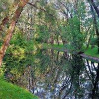 Глубокие отражения Парка Победы 4... :: Sergey Gordoff