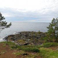 Скалистый берег Валаама :: Надежда