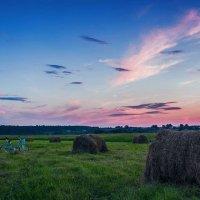 Розовый вечер. :: Геннадий Ивкин