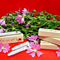 Цветы и Гель, что быть красивой! :: Михаил Столяров