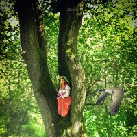 Сказка в лесу :: Gegrey К.