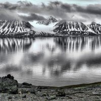 жтзнь в ч/б в Арктике :: Георгий А