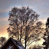 За окном +30 а это зимний вечер! :: Антоха Л