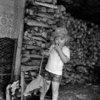 Думы в дровнике :: Светлана Рябова-Шатунова