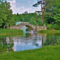 Вид с берега на Горбатый мост... :: Sergey Gordoff