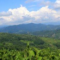 лучше гор могут быть только горы... :: Анна Шишалова