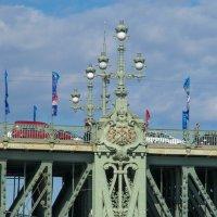 Опора Литейного моста :: Сергей Лындин
