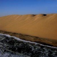 Место встречи Атлантика и Пустыни Намиб. :: Jakob Gardok