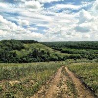 Про летние прогулки.. :: Андрей Заломленков