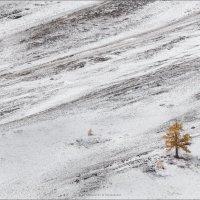 Одиночество осень .. :: Влад Соколовский