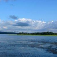 Карелия, Онежское озеро :: Надежда