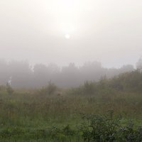 Выстрел в туман. :: Анатолий. Chesnavik.