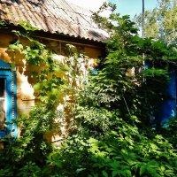 Домишко в деревеньке :: Валентина Пирогова