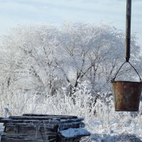 Красота зимы :: Светлана Рябова-Шатунова