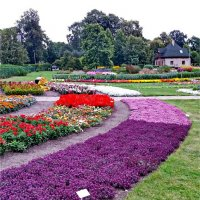 Ботанический сад - Булдури, Латвия. :: Liudmila LLF