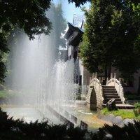 Фонтан в китайском садике :: Вячеслав Маслов