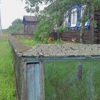 Палисадник :: Николай Масляев