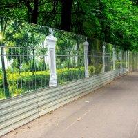 Фальш забор  3 :: Сергей