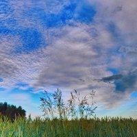 Полотно Небесного мастера! :: Елена (Elena Fly) Хайдукова