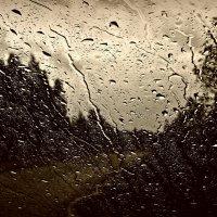Дождь за окном :-( :: Михаил Цегалко