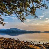 summer morning on the lake :: Dmitry Ozersky