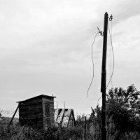 сельская присельская жизнь :: Таня Новикова
