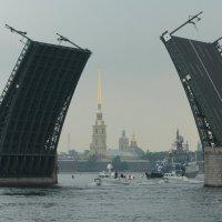 Дворцовый мост :: tipchik