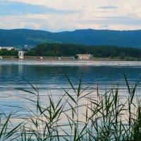 На фоне озера и тайги :: Владимир Звягин