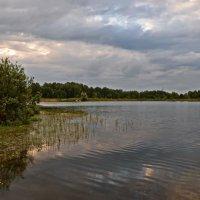 Вечер на озере. :: Valeri Verovets