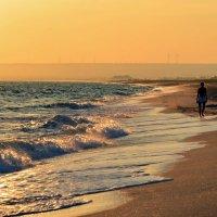 Море никого не любит, но возле него многие чувствуют себя счастливыми... :: Ольга Голубева
