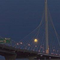 Вантовый мост в лунную ночь. :: Senior Веселков Петр