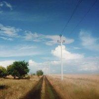 После дождя... Крымская степь... After the rain... The Crimean steppe... :: Сергей Леонтьев