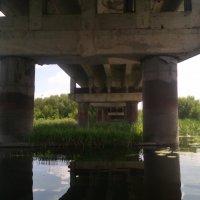 Проплывая под мостом.... :: Ольга Кривых